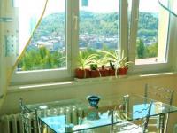 Prodej bytu 2+1, 53 m2+B, 6 NP, OV, ul. Ostrovská - Růžovy Vrch, Karlovy Vary